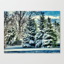 Winter In New England Canvas Print