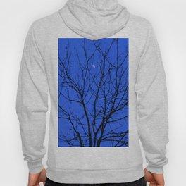 Magic in the Moonlight Hoody