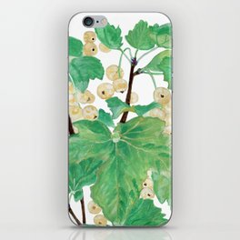 Branch of white currants iPhone Skin