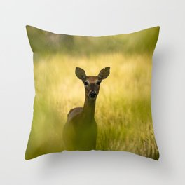 Keeping Tabs - Watchful Young Deer Through Tree Leaves in Wyoming Throw Pillow