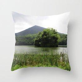 Peaks of Otter Throw Pillow