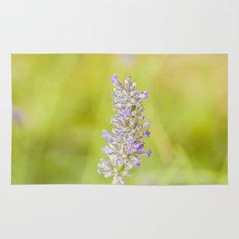 Lavender flower Rug