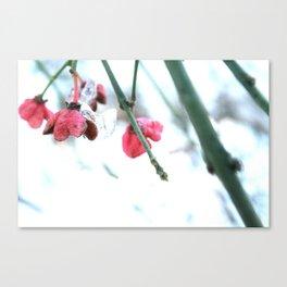 Pink Drops Canvas Print