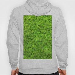 Green Moss Hoody