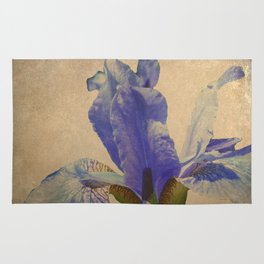 Antique Iris Rug