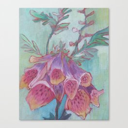 Foxglove Study Canvas Print