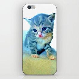Cute Colorful Cat Couple iPhone Skin