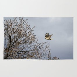 Red Tailed Hawk In Flight Rug