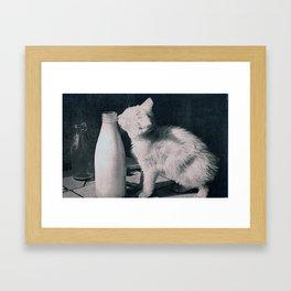cat's milk Framed Art Print