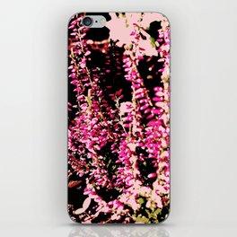 Heide Erika Calluna Vulgaris iPhone Skin