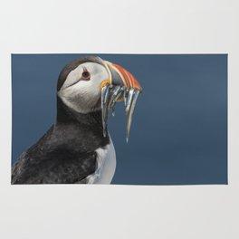 Atlantic puffin bird with fish Rug
