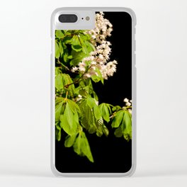 blooming Aesculus tree on black Clear iPhone Case