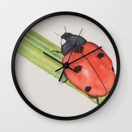 Ladybird on a blade of grass Wall Clock