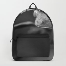 Cute Little Frog (Black and White) Backpack