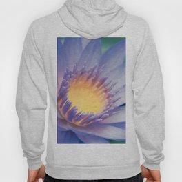 He makana nau Ke Aloha - Nymphaea stellata  - Star Lotus Hoody