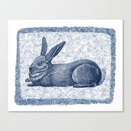 Rabbit print, Vintage Rabbit, Animal Wall Art Canvas Print