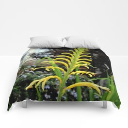 It's Only Natural Comforters