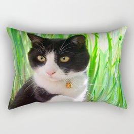 Orazio and the princess frog Rectangular Pillow