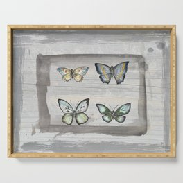 Butterfly study Serving Tray