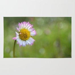 Pinky daisy #2 Rug