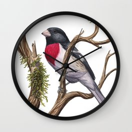 Rose-breasted Grosbeak (Pheucticus ludovicianus) Wall Clock