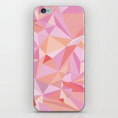 Circle 3 iPhone & iPod Skin