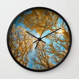 Morning Glory  Photography Wall Clock