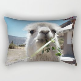 Llama eatin in Peru Rectangular Pillow
