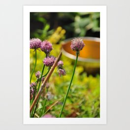 Flower pot 2 Art Print