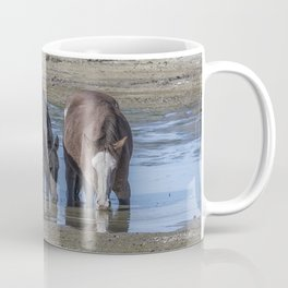 Mustangs Sharing What's Left of the Water Coffee Mug
