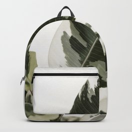Variegated Rubber Plant 03 Backpack
