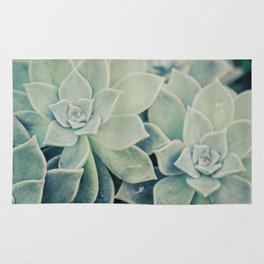 Botanical -- Jade, Mother-of-pearl, Ghost Plant Leaves Rug