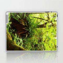 Rainforest Ferns Laptop & iPad Skin