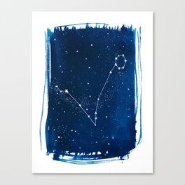Pisces Zodiac Print Canvas Print