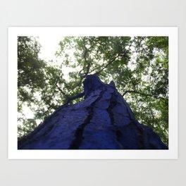 Tall Blue Beauties Art Print