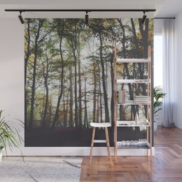 Autumn Forest Trees Wall Mural
