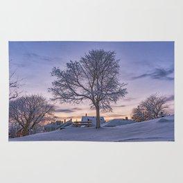 Winter sunset Rug