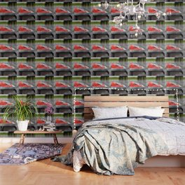 Single life Wallpaper