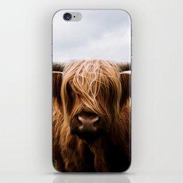 Scottish Highland Cattle in Scotland Portrait II iPhone Skin