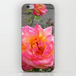 Pink and Yellow Flower iPhone Skin
