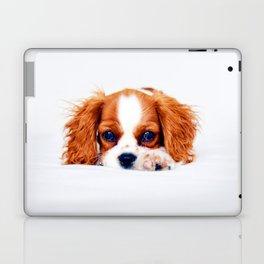 Cavalier King Charles Laptop & iPad Skin