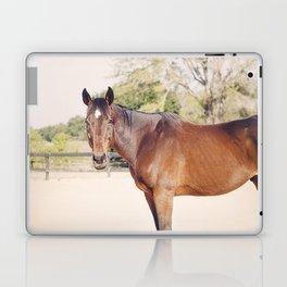 Kind Gulliver Laptop & iPad Skin