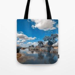 Kruger Park Landscape - Winter Blue Tote Bag