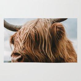 Scottish Highland Cattle - Animal Photography Rug