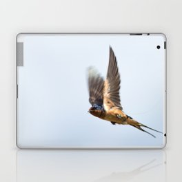 Male barn swallow in flight Laptop & iPad Skin
