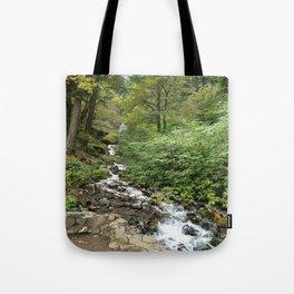 Columbia River Gorge National Scenic Area ( wahkeena) Tote Bag