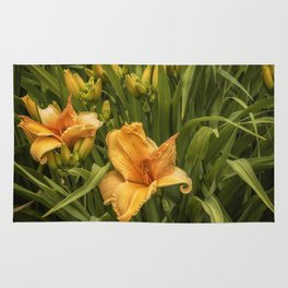 Orange Daylilies Rug