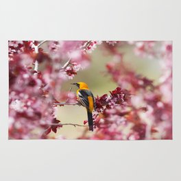 Oriole in Plum Tree Rug