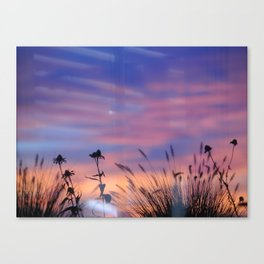 LOOK OUTSIDE - Flowers & Sunset #1 #art #society6 Canvas Print
