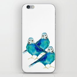 Blue budgie watercolor iPhone Skin